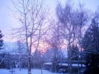 Mon jardin hiver 2003