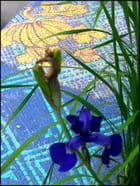 Mosaïque à motifs  floraux dorés