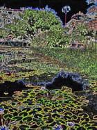 Municipal Pond