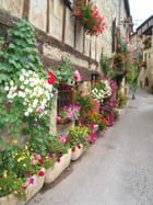 Mur de fleurs