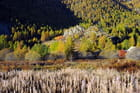 Nevache automne 1