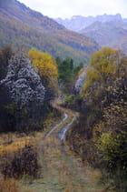 Nevache automne 7