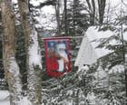 Noël en forêt