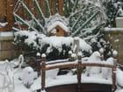 Noêl sous la neige