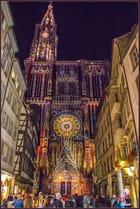 Notre Dame en couleurs