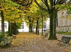 Novembre à Bordeaux...