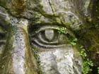Oeil de pierre
