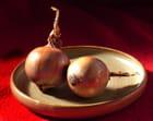 Oignons de Provence