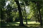 Ombre et lumière au jardin botanique - 8