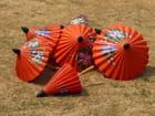 Ombrelles au Soleil