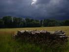 Orage sur les champs