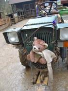ourson fermier