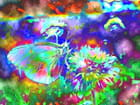 Papillon-lumière 5
