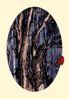 Papillon mystère