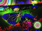 Papillon-psychédélique