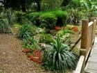 Parc Areca, jardin botanique