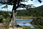Parc naturel Tierra de Fuego