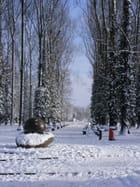 Parc sous la neige