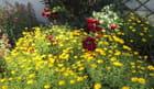 Partaire de fleurs