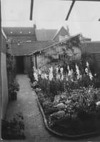 Le jardin de mon enfance