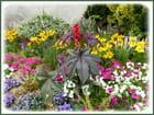 Parterres de fleurs colorés - 2