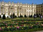 Parterres fleuris à Versailles