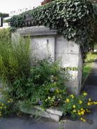 Partrimoine alpicois : la seconde fontaine royale (1)