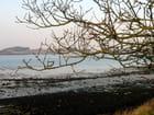Paysage des abers à marée basse en hiver