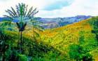 Paysage des Hautes Terres