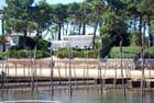 paysage du Bassin d'Arcachon