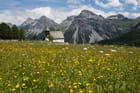 Petite Chapelle au milieu d'un champ de fleurs