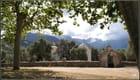 Petite chapelle dans les oliviers...