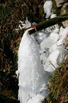 Petite fontaine gelée
