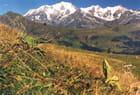 Petite promenade autour du Mont-Blanc (1)