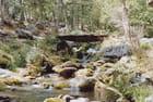 Petite rivière de montagne