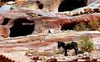 Pétra abrite d' innombrables cavités naturelles