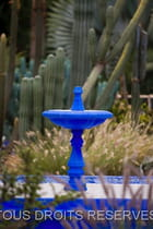 Photo jardin majorelle Marrakech