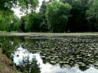 Pièce d'eau parc du château de Cheverny