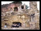 Pique-nique dans une Abbaye 13