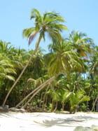 Plage île du Salut