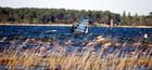 planches à voile sur le lac