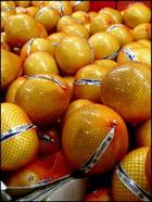 Pomelos chinois