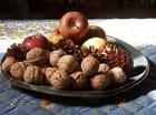 Pommes de Cézanne et pommes de pin