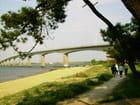 Pont de la Seudre