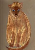 Portrait   d'Amadeus
