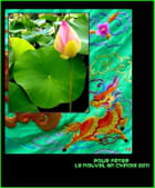 Pour fêter le Nouvel An chinois 2011
