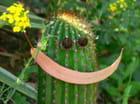 Pour finir sur un sourire, après tous ces piquants !