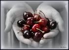 Pour une poignée de cerises....