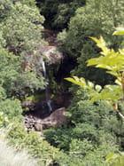 Près de Vic-sur-Cère - Auvergne