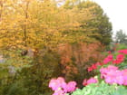 Printemps-automne